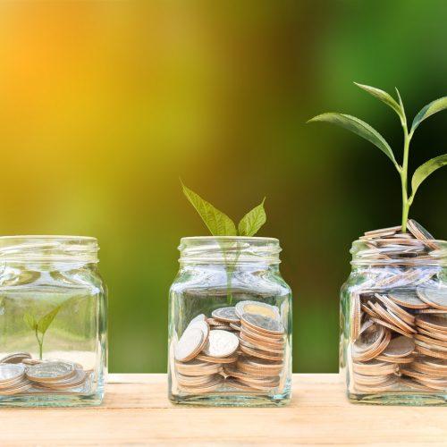 Accountancy fees